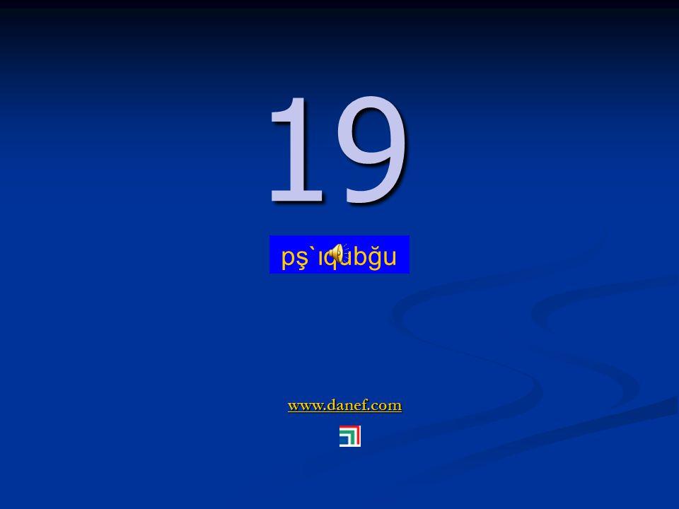 www.danef.com 18 18 pş`ıquyi