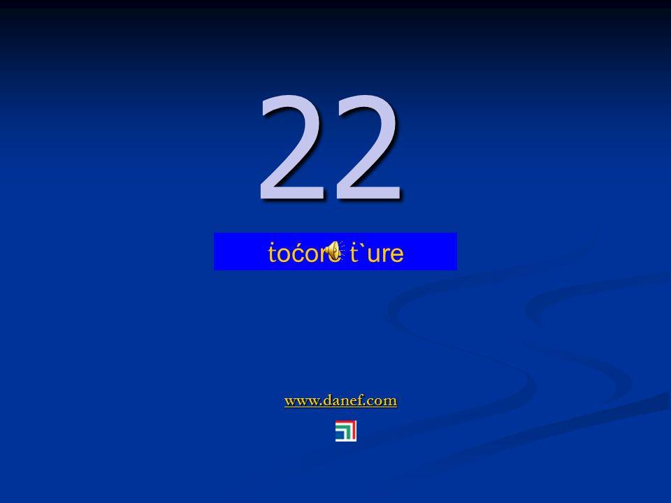 www.danef.com 21 21 ṫ oć zıre