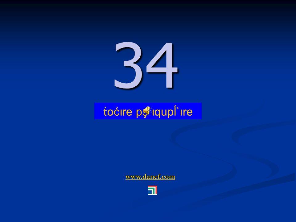 www.danef.com 33 33 ṫ oćoıre ć`ıquşre