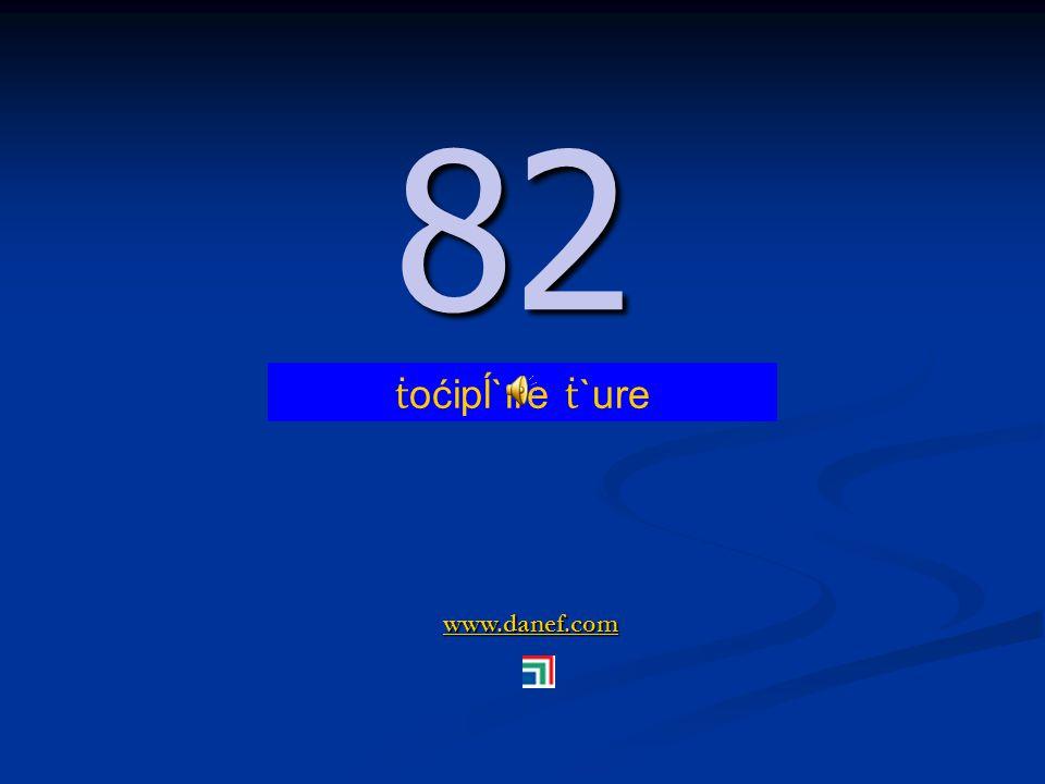 www.danef.com 81 81 ṫ oćipĺ`ıre zıre