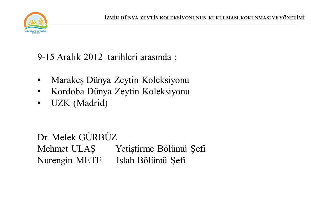 9-15 Aralık 2012 tarihleri arasında ; Marakeş Dünya Zeytin Koleksiyonu Kordoba Dünya Zeytin Koleksiyonu UZK (Madrid) Dr.