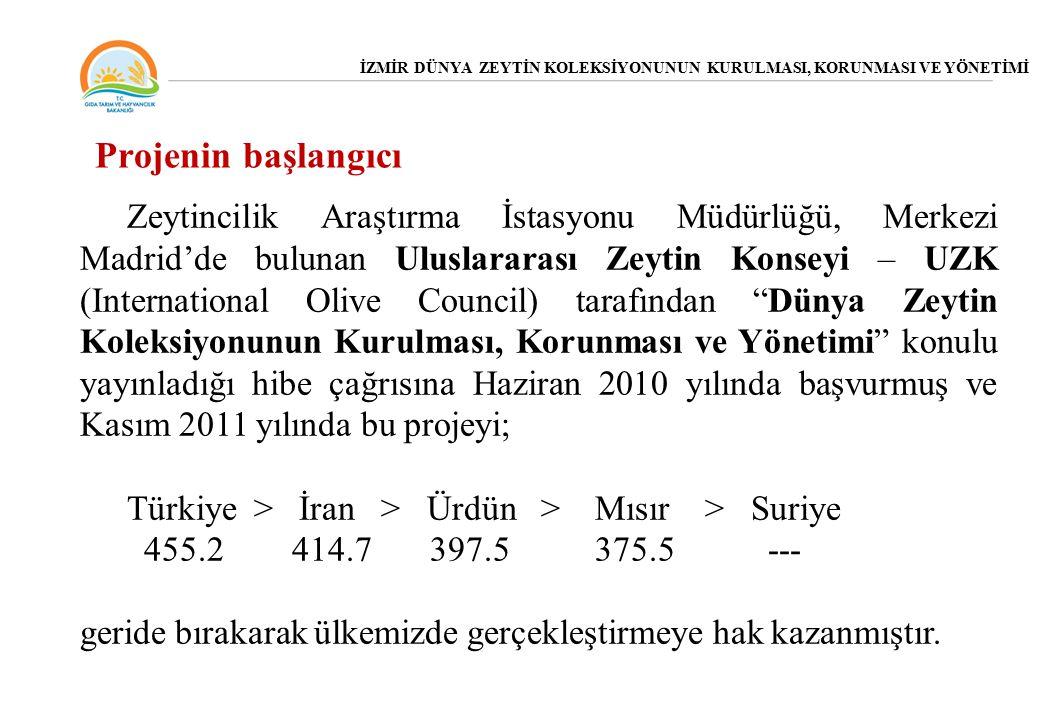 Projenin başlangıcı Zeytincilik Araştırma İstasyonu Müdürlüğü, Merkezi Madrid'de bulunan Uluslararası Zeytin Konseyi – UZK (International Olive Council) tarafından Dünya Zeytin Koleksiyonunun Kurulması, Korunması ve Yönetimi konulu yayınladığı hibe çağrısına Haziran 2010 yılında başvurmuş ve Kasım 2011 yılında bu projeyi; Türkiye > İran > Ürdün > Mısır > Suriye 455.2 414.7 397.5 375.5 --- geride bırakarak ülkemizde gerçekleştirmeye hak kazanmıştır.