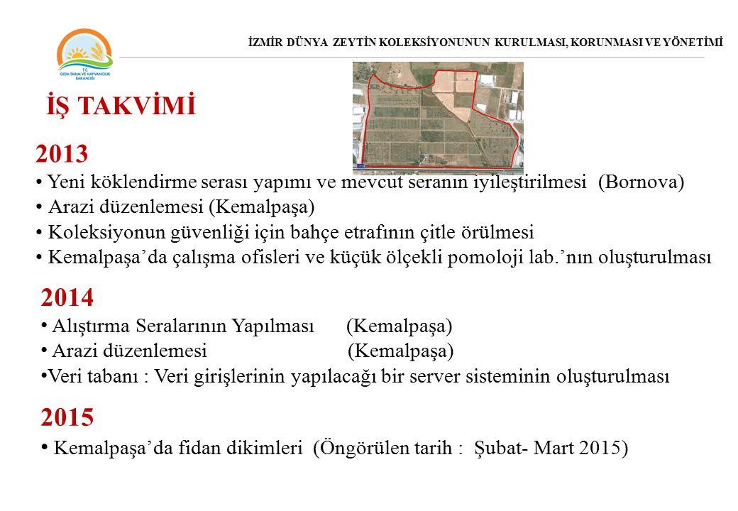 2013 Yeni köklendirme serası yapımı ve mevcut seranın iyileştirilmesi (Bornova) Arazi düzenlemesi (Kemalpaşa) Koleksiyonun güvenliği için bahçe etrafının çitle örülmesi Kemalpaşa'da çalışma ofisleri ve küçük ölçekli pomoloji lab.'nın oluşturulması İŞ TAKVİMİ 2015 Kemalpaşa'da fidan dikimleri (Öngörülen tarih : Şubat- Mart 2015) 2014 Alıştırma Seralarının Yapılması (Kemalpaşa) Arazi düzenlemesi (Kemalpaşa) Veri tabanı : Veri girişlerinin yapılacağı bir server sisteminin oluşturulması İZMİR DÜNYA ZEYTİN KOLEKSİYONUNUN KURULMASI, KORUNMASI VE YÖNETİMİ
