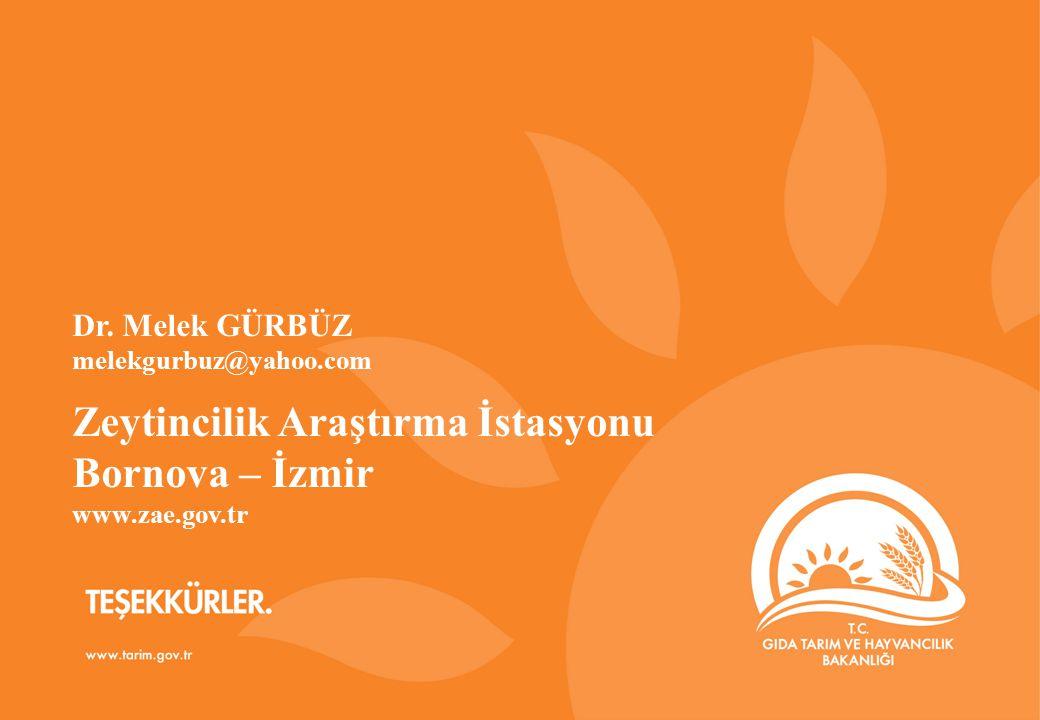 TEŞEKKÜRLER www.gsb.gov.tr Zeytincilik Araştırma İstasyonu Bornova – İzmir www.zae.gov.tr Dr.