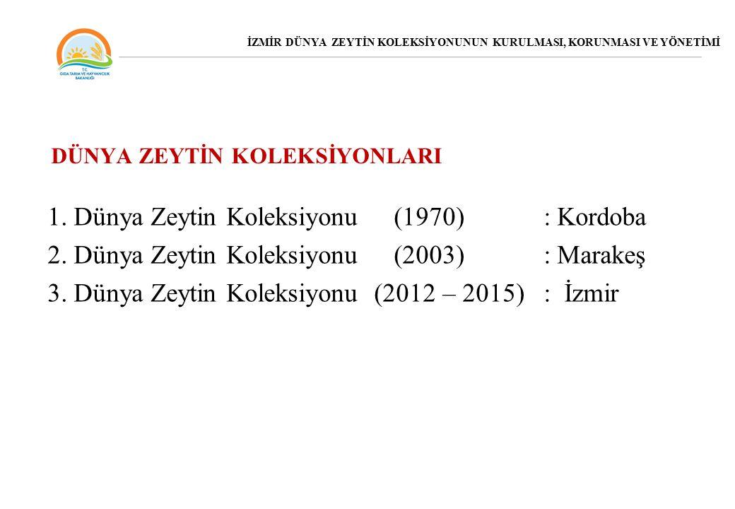 1.Dünya Zeytin Koleksiyonu (1970) : Kordoba 2. Dünya Zeytin Koleksiyonu (2003) : Marakeş 3.