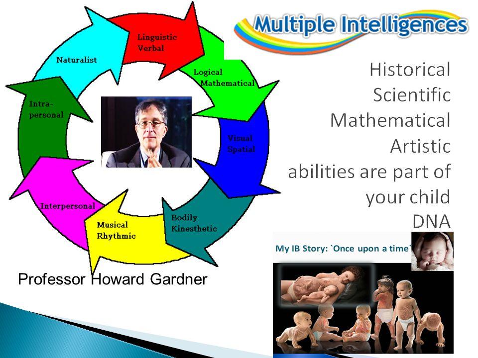 Professor Howard Gardner
