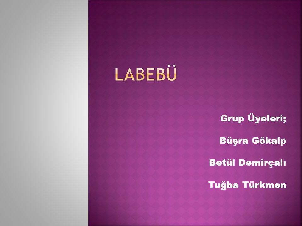 Grup Üyeleri; Büşra Gökalp Betül Demirçalı Tuğba Türkmen