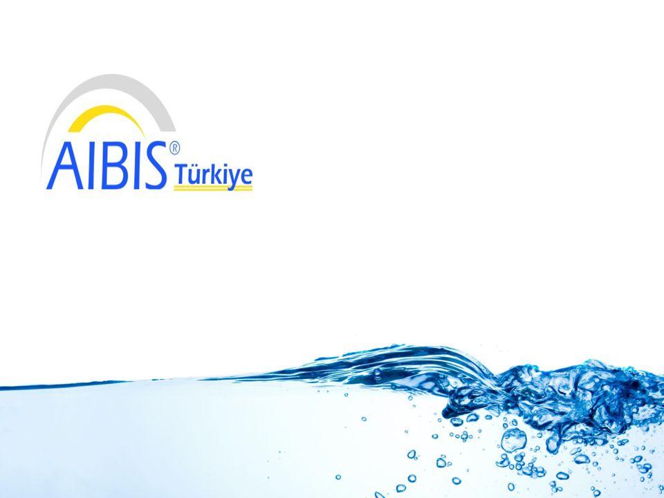 Bilişim sektöründe faaliyet gösteren firmalar arasında lider, önce ve yenilikçi olmayı kendisine vizyon edinmiş olan AIBIS; Türkiye, Almanya ve Suudi Arabistan'da şubeleri bulunan çok uluslu bir yazılım firmasıdır.