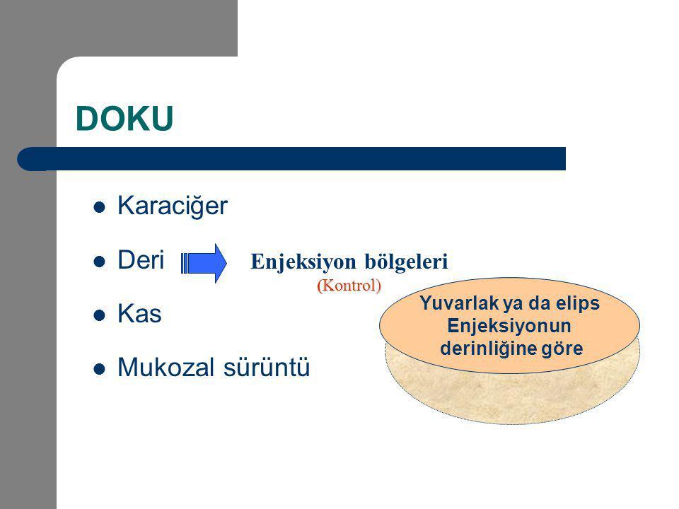 DOKU Karaciğer Deri Kas Mukozal sürüntü Enjeksiyon bölgeleri Kontrol) (Kontrol) Yuvarlak ya da elips Enjeksiyonun derinliğine göre