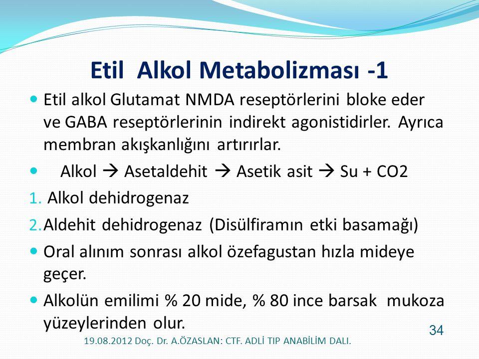 Etil alkol Glutamat NMDA reseptörlerini bloke eder ve GABA reseptörlerinin indirekt agonistidirler. Ayrıca membran akışkanlığını artırırlar. Alkol  A