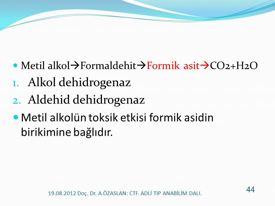 Metil alkol  Formaldehit  Formik asit  CO2+H2O 1. Alkol dehidrogenaz 2. Aldehid dehidrogenaz Metil alkolün toksik etkisi formik asidin birikimine b