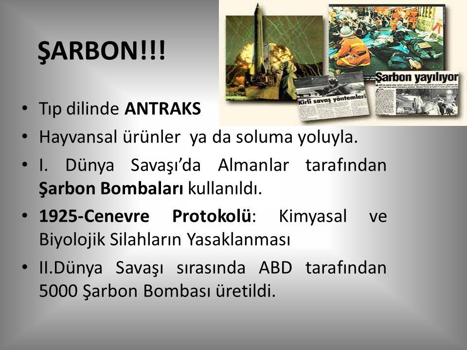 ŞARBON!!.Tıp dilinde ANTRAKS Hayvansal ürünler ya da soluma yoluyla.