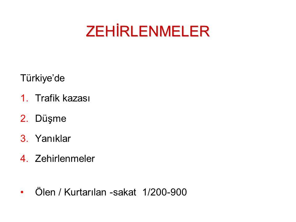 Türkiye'de 1.Trafik kazası 2.Düşme 3.Yanıklar 4.Zehirlenmeler Ölen / Kurtarılan -sakat 1/200-900ZEHİRLENMELER