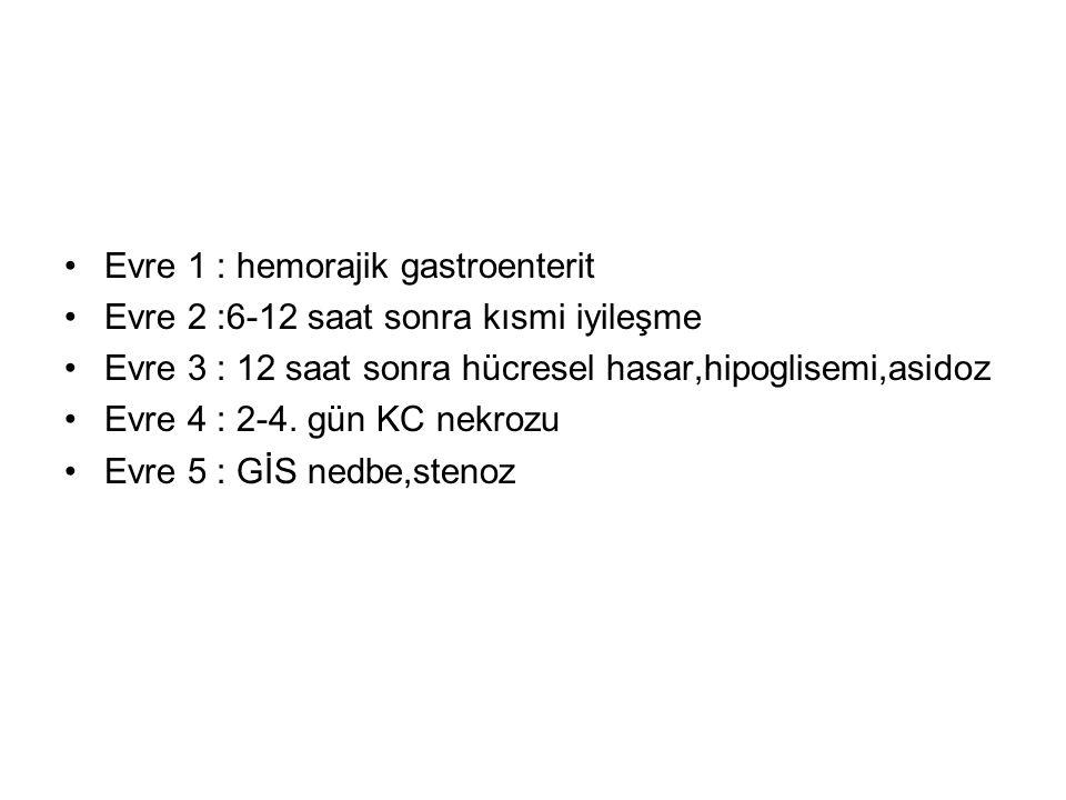 Evre 1 : hemorajik gastroenterit Evre 2 :6-12 saat sonra kısmi iyileşme Evre 3 : 12 saat sonra hücresel hasar,hipoglisemi,asidoz Evre 4 : 2-4. gün KC