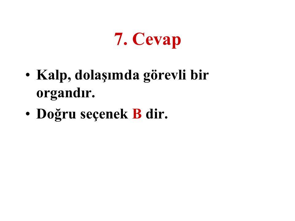 7. Cevap Kalp, dolaşımda görevli bir organdır. Doğru seçenek B dir.