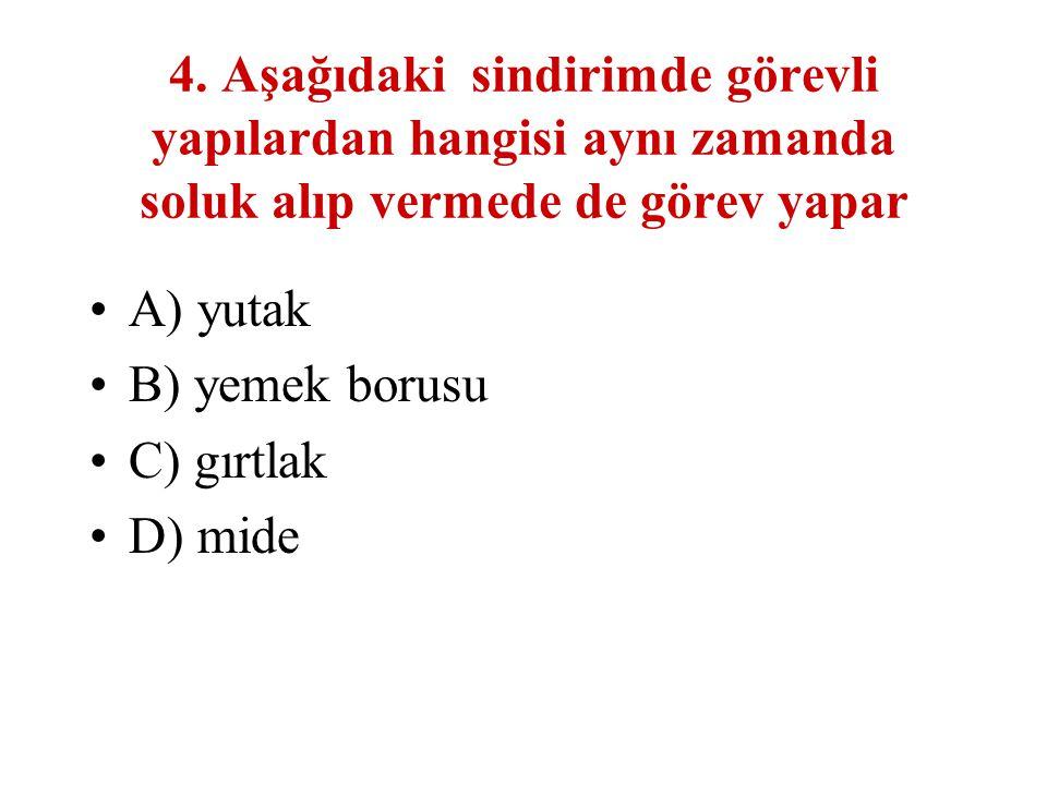 4. Aşağıdaki sindirimde görevli yapılardan hangisi aynı zamanda soluk alıp vermede de görev yapar A) yutak B) yemek borusu C) gırtlak D) mide