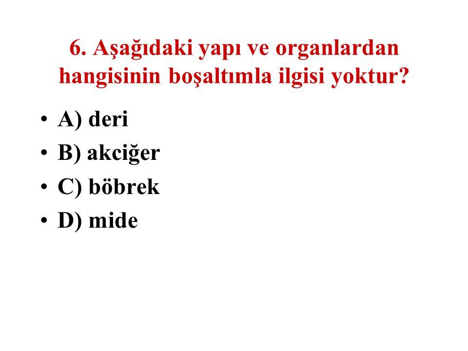 6. Aşağıdaki yapı ve organlardan hangisinin boşaltımla ilgisi yoktur? A) deri B) akciğer C) böbrek D) mide