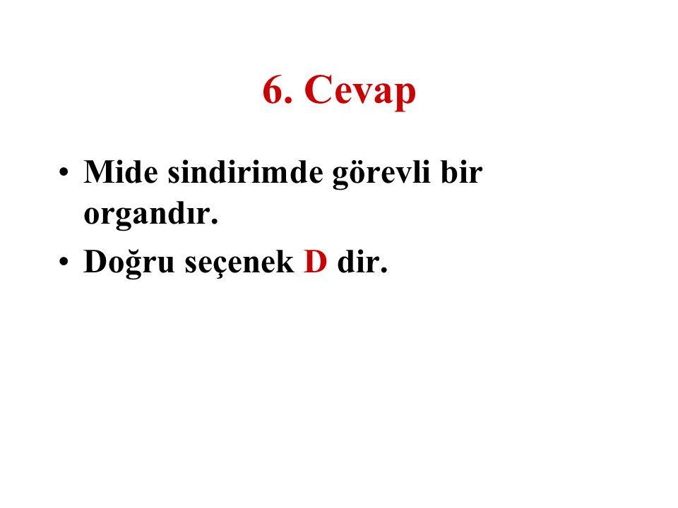 6. Cevap Mide sindirimde görevli bir organdır. Doğru seçenek D dir.