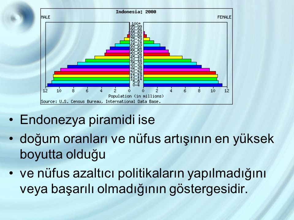 Endonezya piramidi ise doğum oranları ve nüfus artışının en yüksek boyutta olduğu ve nüfus azaltıcı politikaların yapılmadığını veya başarılı olmadığı