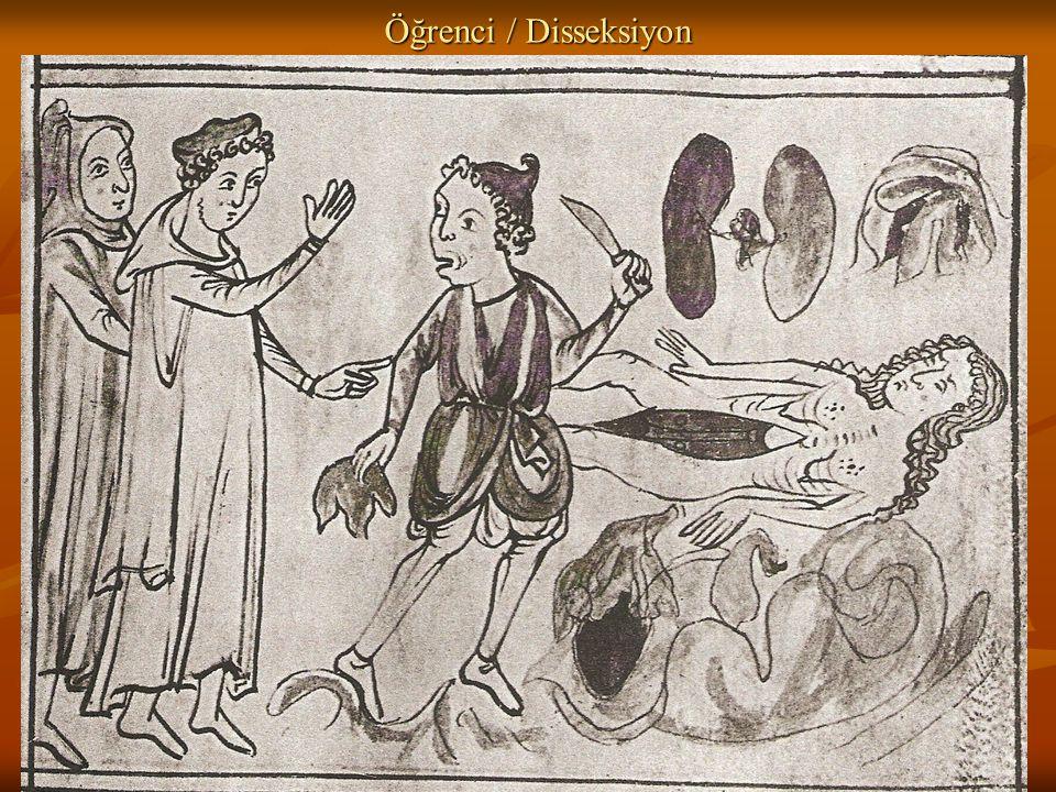 Öğrenci / Disseksiyon