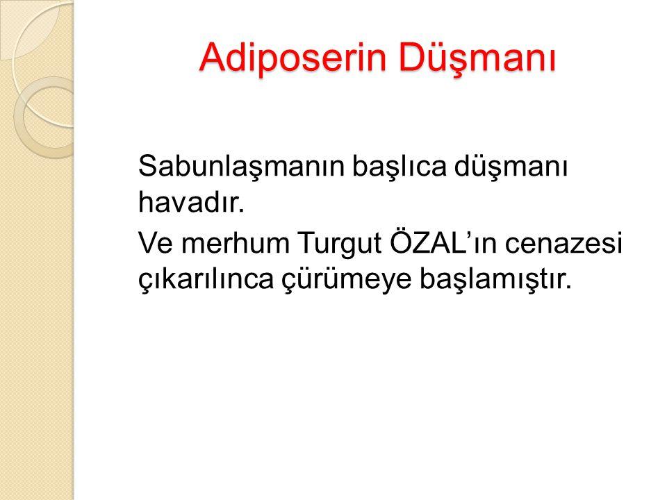 Adiposerin Düşmanı Sabunlaşmanın başlıca düşmanı havadır. Ve merhum Turgut ÖZAL'ın cenazesi çıkarılınca çürümeye başlamıştır.
