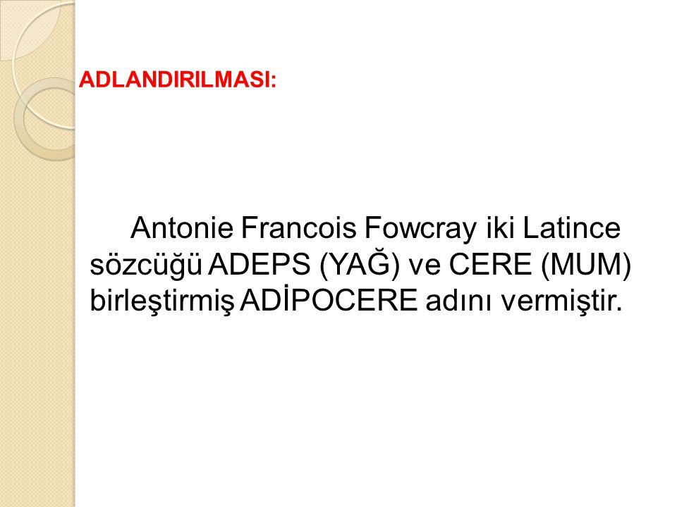 Antonie Francois Fowcray iki Latince sözcüğü ADEPS (YAĞ) ve CERE (MUM) birleştirmiş ADİPOCERE adını vermiştir. ADLANDIRILMASI: