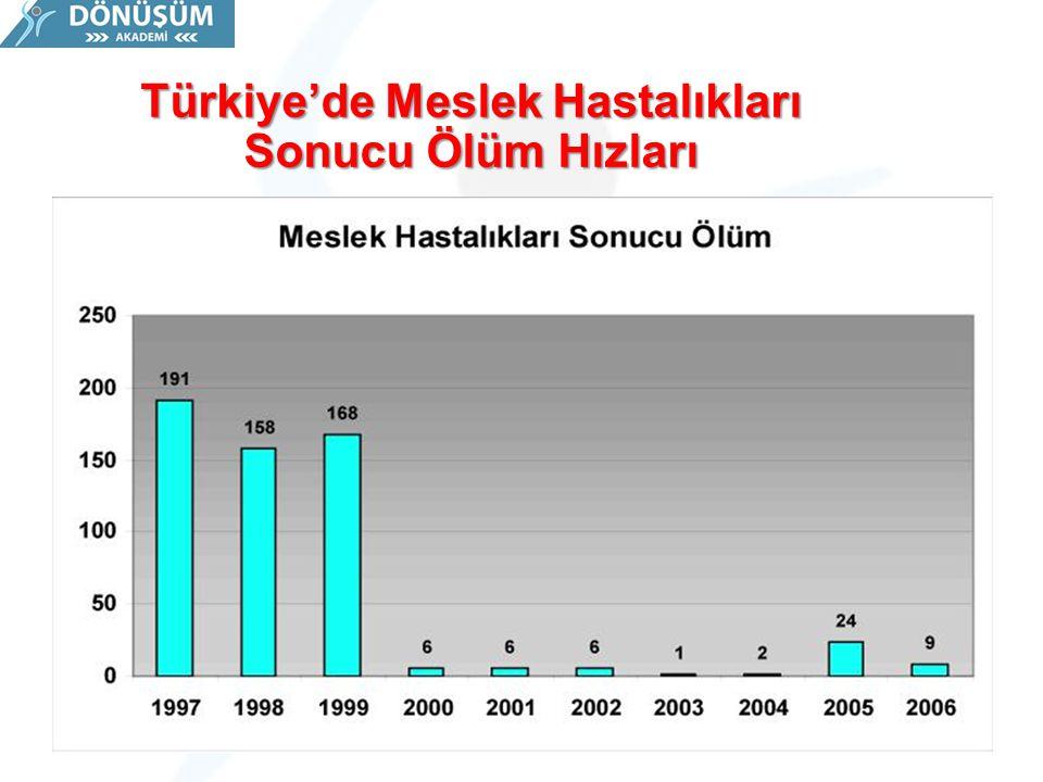 Türkiye'de Meslek Hastalıkları Sonucu Ölüm Hızları