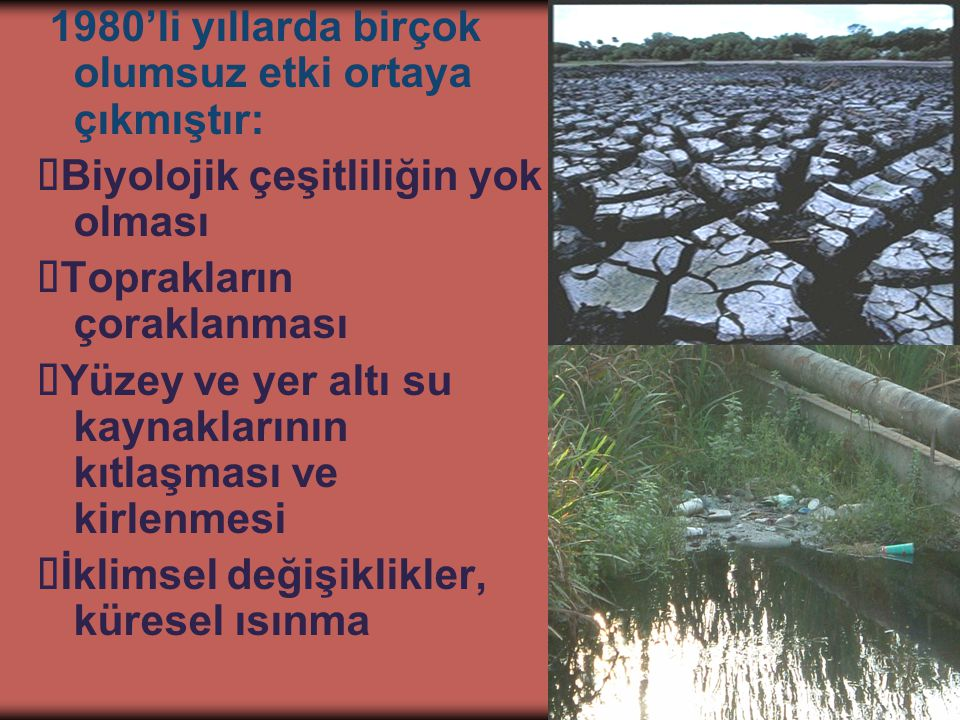 4 1980'li yıllarda birçok olumsuz etki ortaya çıkmıştır:  Biyolojik çeşitliliğin yok olması  Toprakların çoraklanması  Yüzey ve yer altı su kaynaklarının kıtlaşması ve kirlenmesi  İklimsel değişiklikler, küresel ısınma