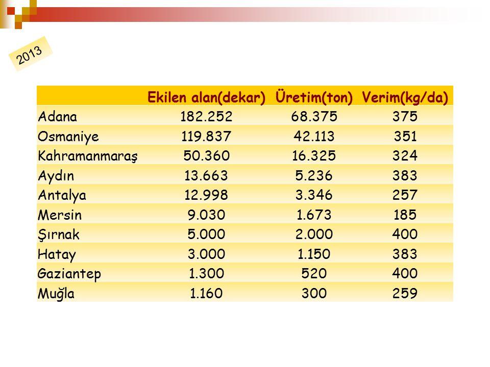 Ekilen alan(dekar)Üretim(ton)Verim(kg/da) Adana182.25268.375375 Osmaniye119.83742.113351 Kahramanmaraş50.36016.325324 Aydın13.6635.236383 Antalya12.99