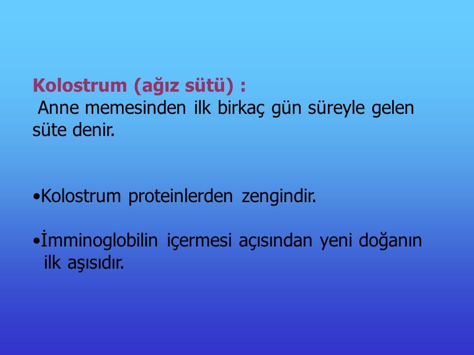 Kolostrum (ağız sütü) : Anne memesinden ilk birkaç gün süreyle gelen süte denir.