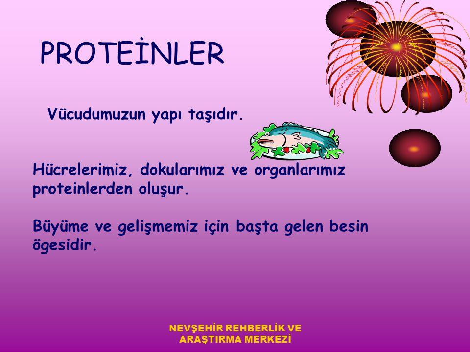 BESİN ÖGELERİ 1-Proteinler 2-Karbonhidratlar 3-Yağlar 4-Vitaminler 5-Mineraller 6-Su NEVŞEHİR REHBERLİK VE ARAŞTIRMA MERKEZİ