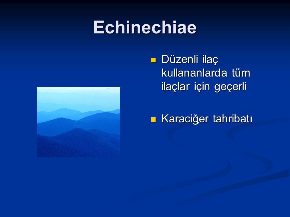 Echinechiae Düzenli ilaç kullananlarda tüm ilaçlar için geçerli Karaciğer tahribatı