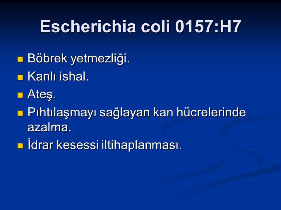 Escherichia coli 0157:H7 Böbrek yetmezliği. Böbrek yetmezliği. Kanlı ishal. Kanlı ishal. Ateş. Ateş. Pıhtılaşmayı sağlayan kan hücrelerinde azalma. Pı