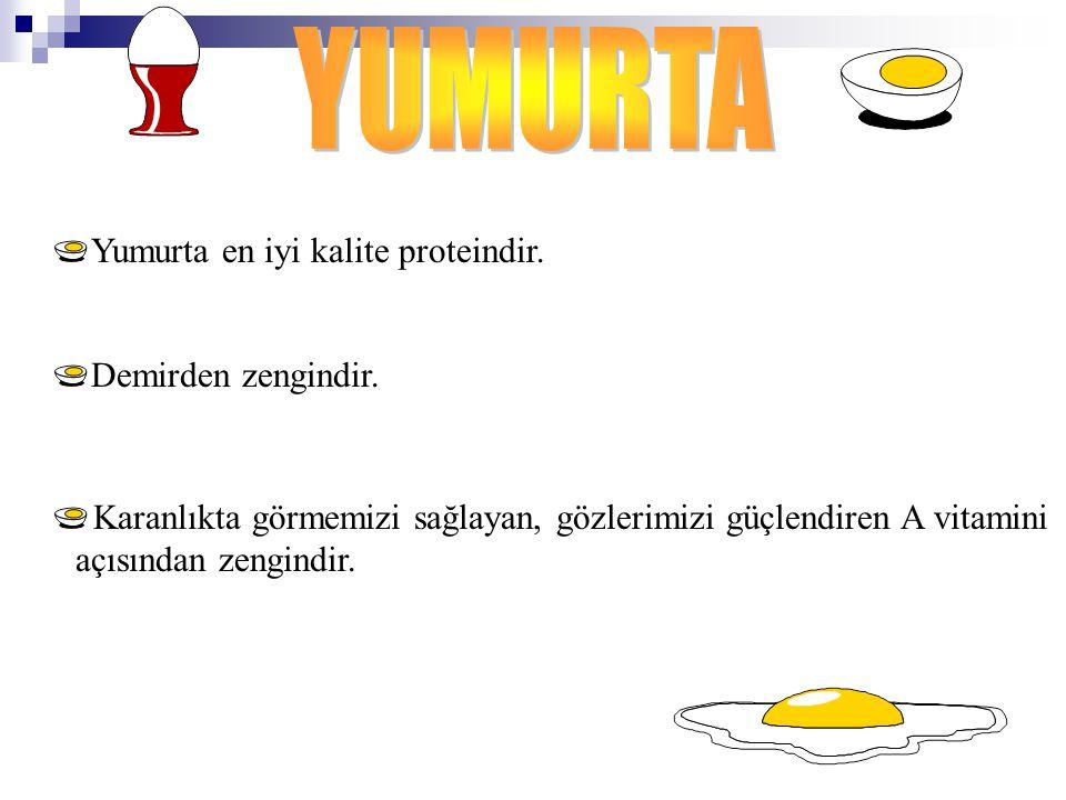 Yumurta en iyi kalite proteindir. Demirden zengindir. Karanlıkta görmemizi sağlayan, gözlerimizi güçlendiren A vitamini açısından zengindir.