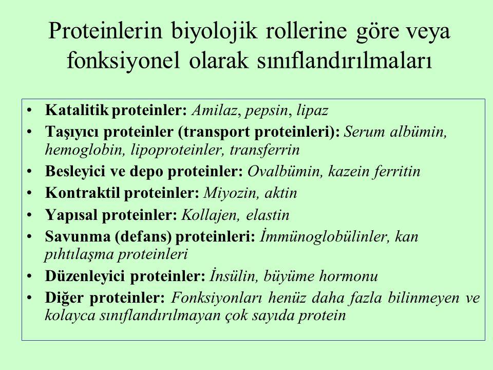 Proteinlerin biyolojik rollerine göre veya fonksiyonel olarak sınıflandırılmaları Katalitik proteinler: Amilaz, pepsin, lipaz Taşıyıcı proteinler (transport proteinleri): Serum albümin, hemoglobin, lipoproteinler, transferrin Besleyici ve depo proteinler: Ovalbümin, kazein ferritin Kontraktil proteinler: Miyozin, aktin Yapısal proteinler: Kollajen, elastin Savunma (defans) proteinleri: İmmünoglobülinler, kan pıhtılaşma proteinleri Düzenleyici proteinler: İnsülin, büyüme hormonu Diğer proteinler: Fonksiyonları henüz daha fazla bilinmeyen ve kolayca sınıflandırılmayan çok sayıda protein