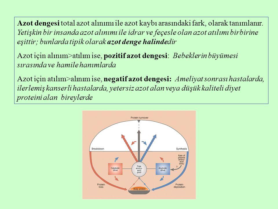 Azot dengesi total azot alınımı ile azot kaybı arasındaki fark, olarak tanımlanır.