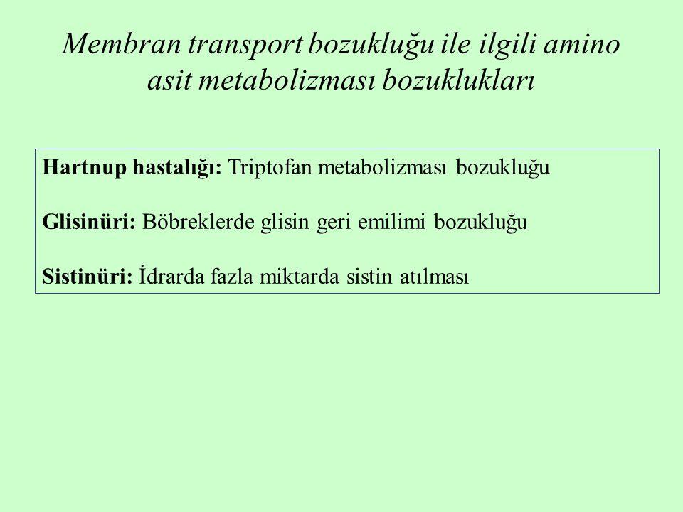 Hartnup hastalığı: Triptofan metabolizması bozukluğu Glisinüri: Böbreklerde glisin geri emilimi bozukluğu Sistinüri: İdrarda fazla miktarda sistin atılması Membran transport bozukluğu ile ilgili amino asit metabolizması bozuklukları