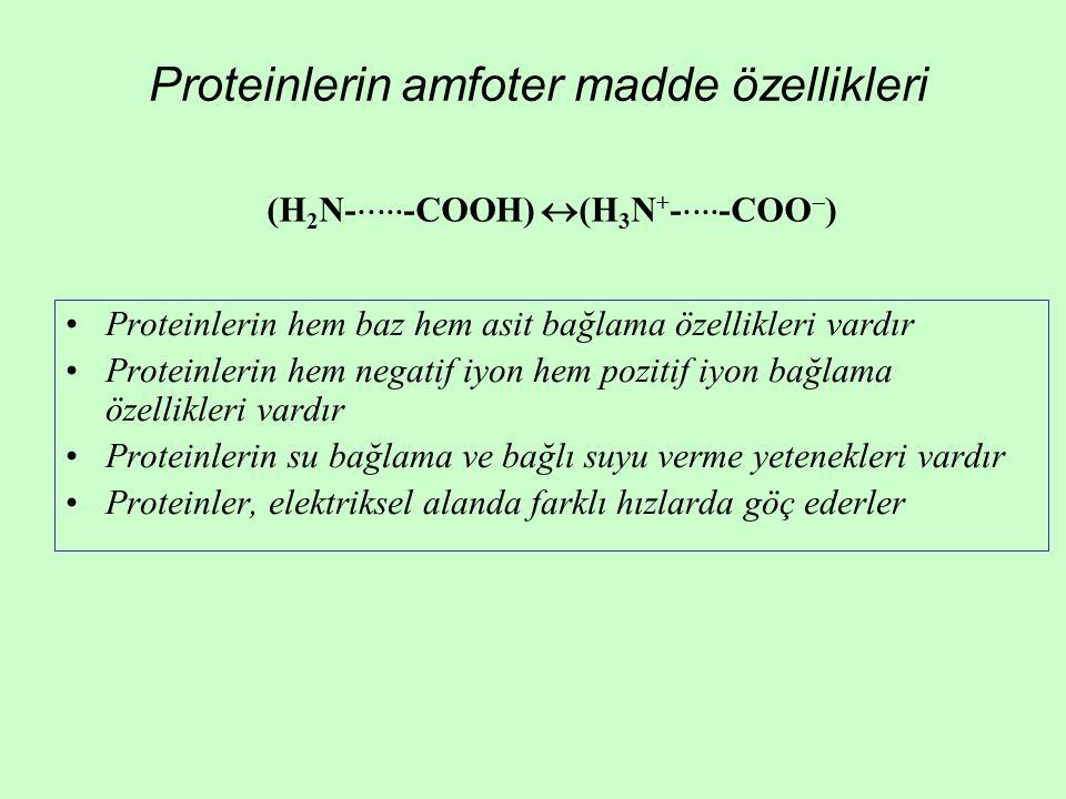 Proteinlerin amfoter madde özellikleri Proteinlerin hem baz hem asit bağlama özellikleri vardır Proteinlerin hem negatif iyon hem pozitif iyon bağlama özellikleri vardır Proteinlerin su bağlama ve bağlı suyu verme yetenekleri vardır Proteinler, elektriksel alanda farklı hızlarda göç ederler (H 2 N-  -COOH)  (H 3 N + -  -COO  )