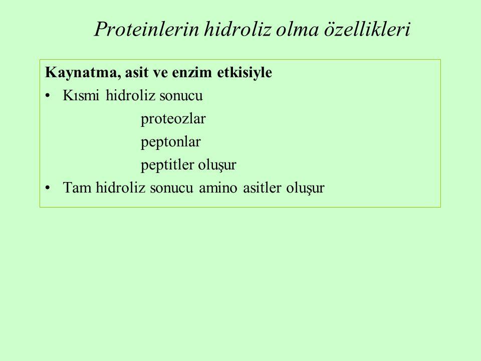Proteinlerin hidroliz olma özellikleri Kaynatma, asit ve enzim etkisiyle Kısmi hidroliz sonucu proteozlar peptonlar peptitler oluşur Tam hidroliz sonucu amino asitler oluşur