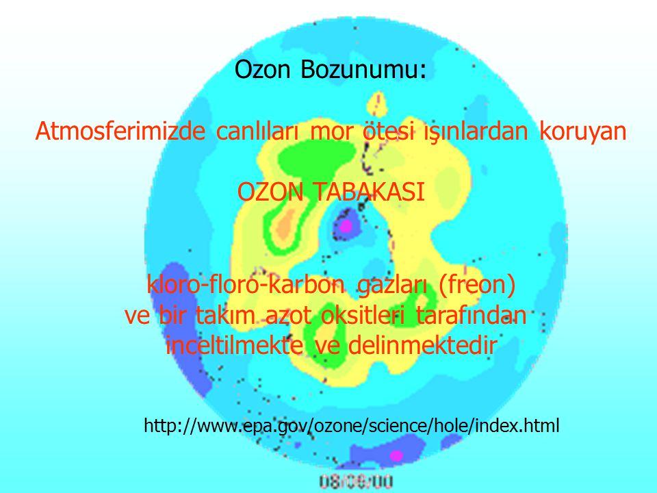http://www.epa.gov/ozone/science/hole/index.html Ozon Bozunumu: Atmosferimizde canlıları mor ötesi ışınlardan koruyan OZON TABAKASI kloro-floro-karbon gazları (freon) ve bir takım azot oksitleri tarafından inceltilmekte ve delinmektedir