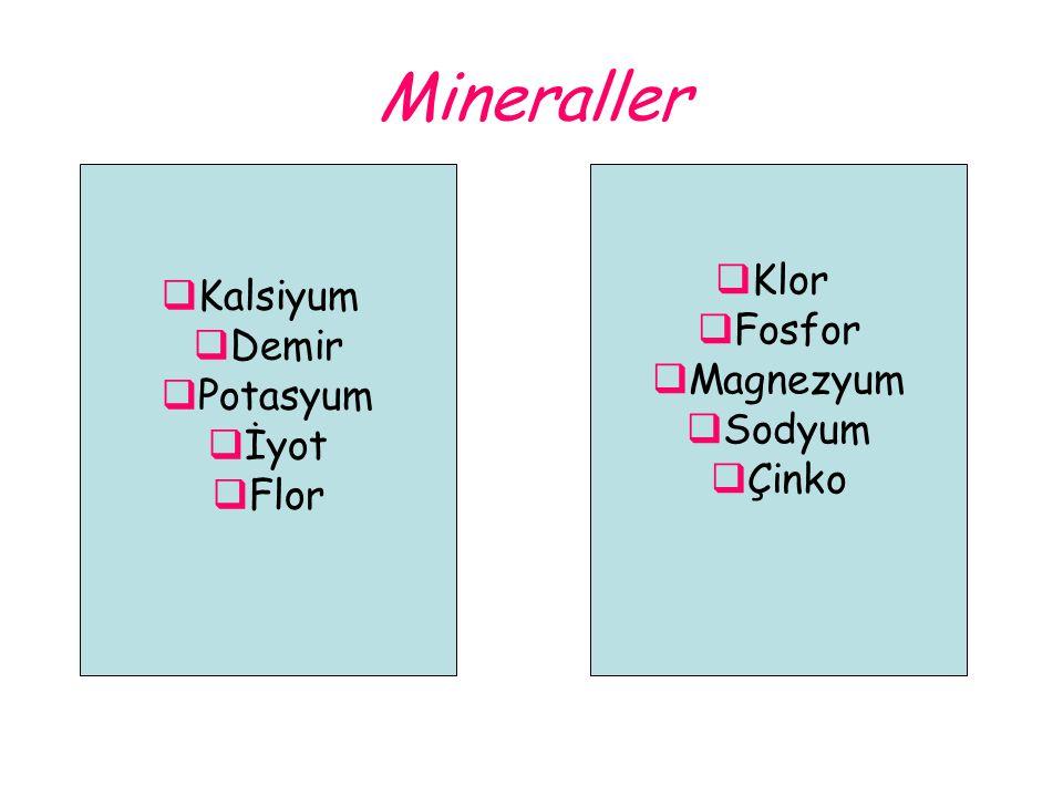 Mineraller  Klor  Fosfor  Magnezyum  Sodyum  Çinko  Kalsiyum  Demir  Potasyum  İyot  Flor