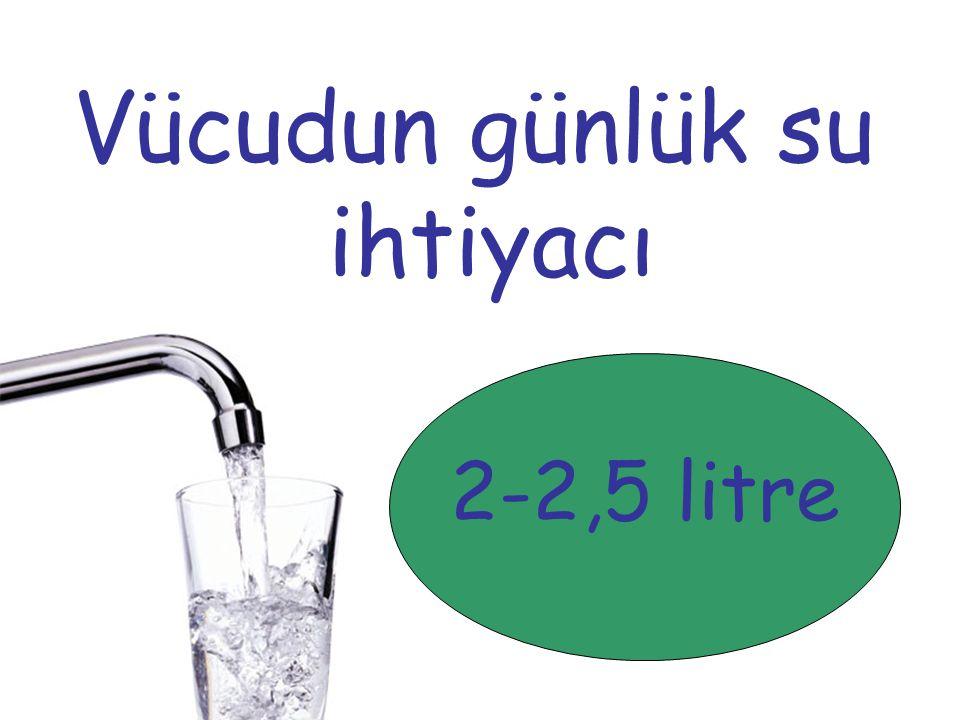 Vücudun günlük su ihtiyacı 2-2,5 litre