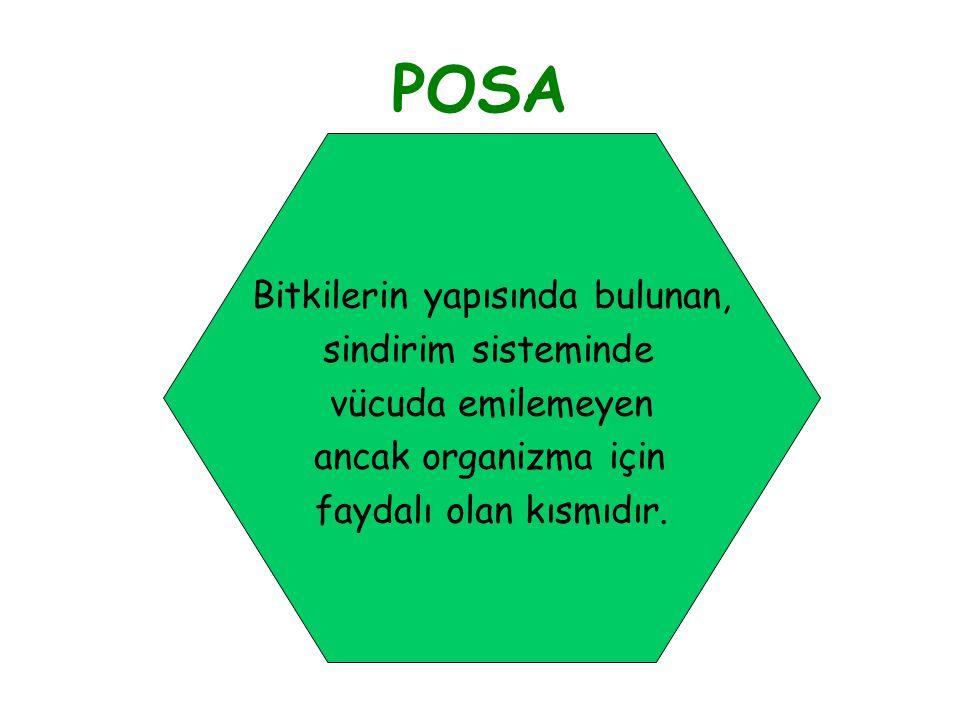 POSA Bitkilerin yapısında bulunan, sindirim sisteminde vücuda emilemeyen ancak organizma için faydalı olan kısmıdır.