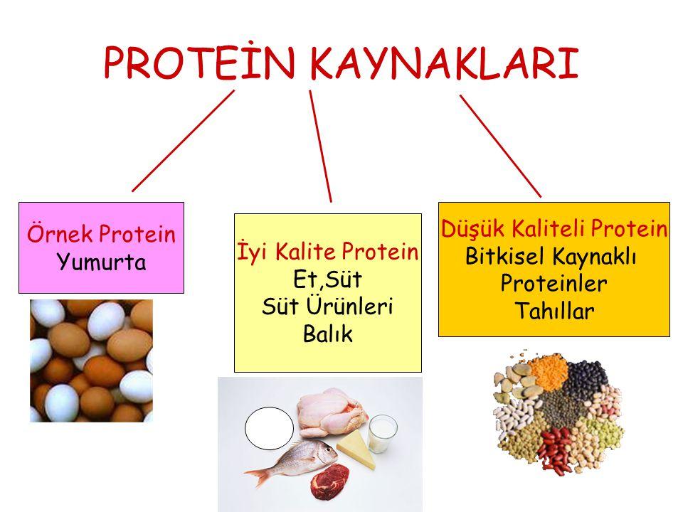 PROTEİN KAYNAKLARI Örnek Protein Yumurta İyi Kalite Protein Et,Süt Süt Ürünleri Balık Düşük Kaliteli Protein Bitkisel Kaynaklı Proteinler Tahıllar