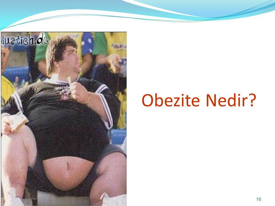 Obezite Nedir? 16