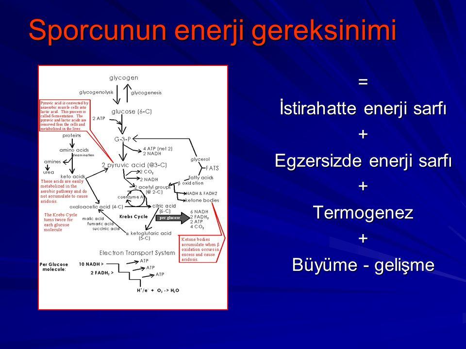 Egzersizde enerji sistemleri