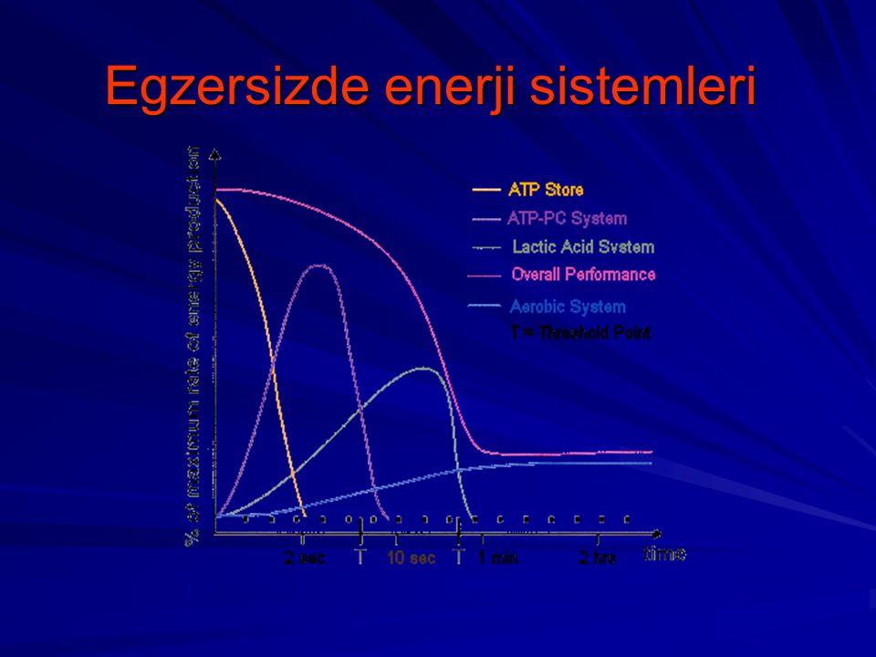 Ağırlık ve yağ oranı kontrolü L-carnitineCLA Bitkisel metabolizma hızlandırıcılar