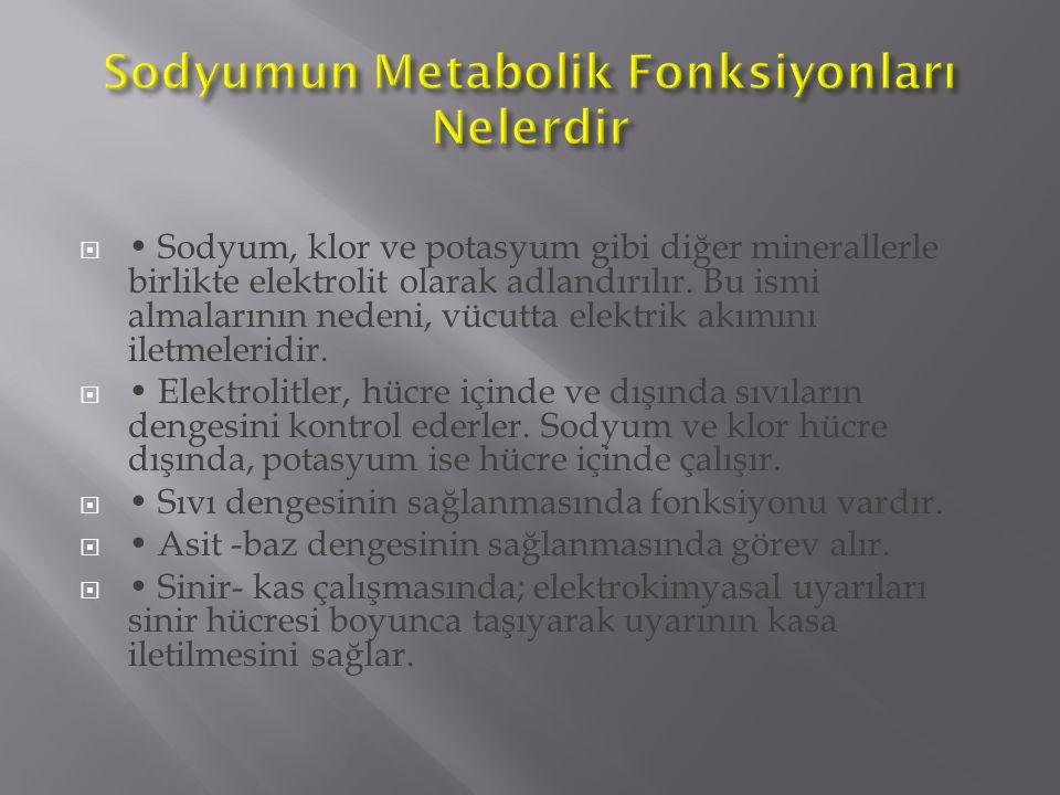  Sodyum, klor ve potasyum gibi diğer minerallerle birlikte elektrolit olarak adlandırılır. Bu ismi almalarının nedeni, vücutta elektrik akımını iletm