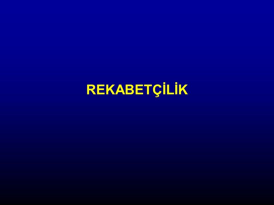 İHRACATIN EKONOMİK FAALİYETE GÖRE DAĞILIMI, 1996 (%) Kaynak: Türkiye Küresel Rekabet Raporu 2006, TÜSİAD-Sabancı Üniversitesi Rekabet Forumu, Istanbul, 2006