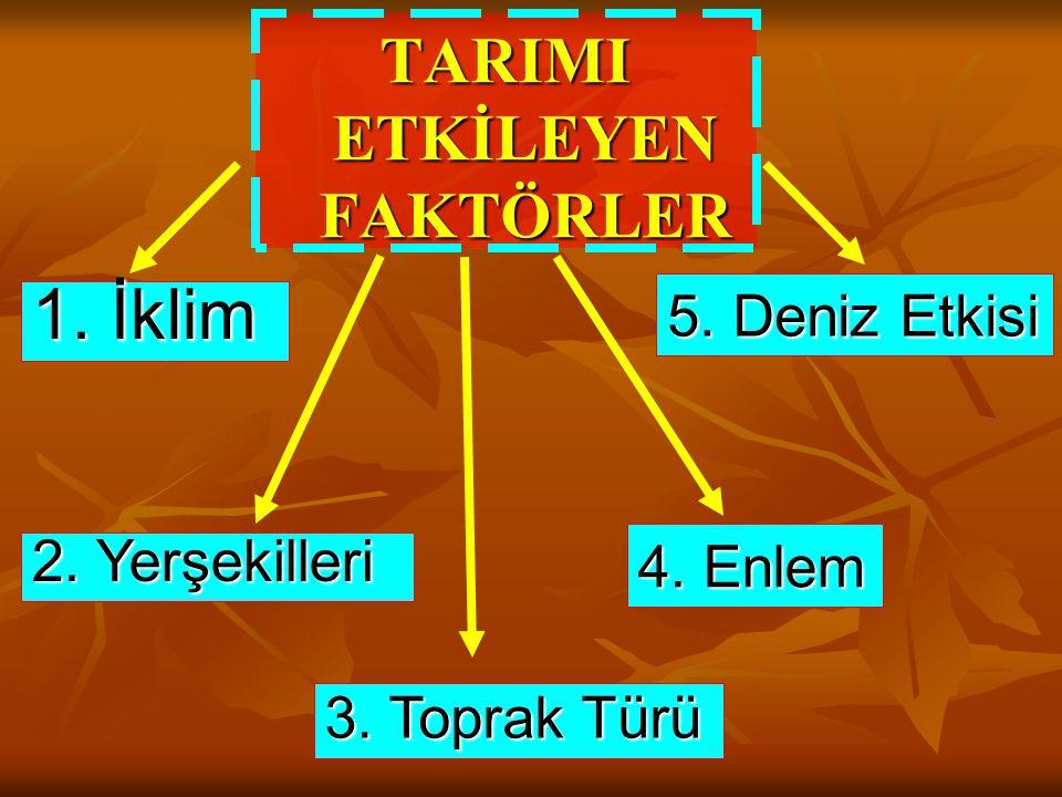 TARIMI ETKİLEYEN FAKTÖRLER 1. İklim 2. Yerşekilleri 3. Toprak Türü 4. Enlem 5. Deniz Etkisi